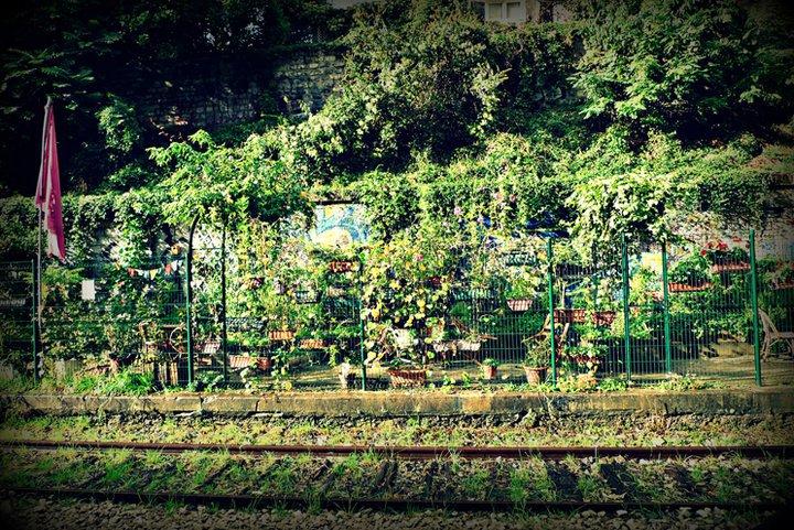 photos_les_jardins_du_ruisseau_-2_-_laietitia_saudry